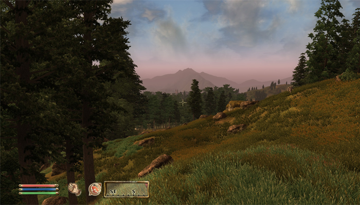 Oblivion, a good-looking game